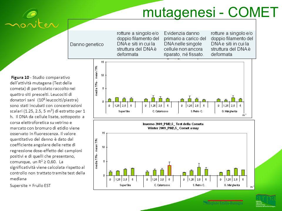 mutagenesi - COMET Figura 10 - Studio comparativo dellattività mutagena (Test della cometa) di particolato raccolto nei quattro siti prescelti.