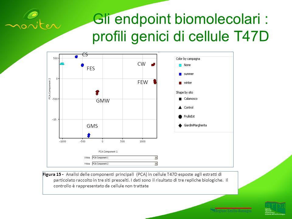 Gli endpoint biomolecolari : profili genici di cellule T47D Figura 15 - Analisi delle componenti principali (PCA) in cellule T47D esposte agli estratti di particolato raccolto in tre siti prescelti.