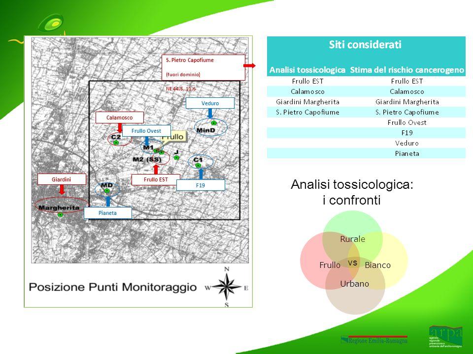 Gli esiti del confronto I risultati ottenuti nella LP5 sono concordi nel mostrare un profilo tossicologico simile nei campioni di aria prelevati nel sito di massimo impatto dellinceneritore (Frullo Est) e nel sito appartenente allo stesso dominio, ma non interessato dalla ricaduta dei fumi dellimpianto (Calamosco).
