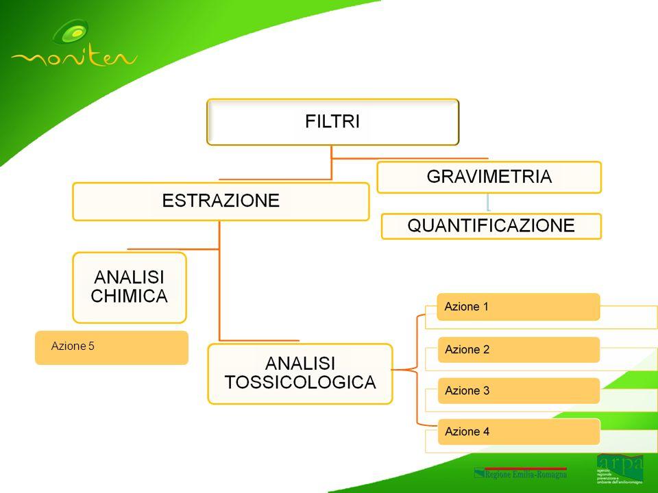Il materiale raccolto per lanalisi tossicologica I campioni analizzati Per ogni sito di raccolta, e stato ottenuto un unico campione per stagione derivato dallestrazione in acetone di tutti i filtri