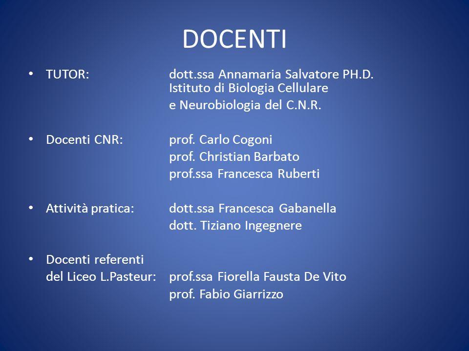 STAGE al CNR Dal 6 al 10 giugno 2011 Area di ricerca di via del Fosso di Fiorano, 64 Roma