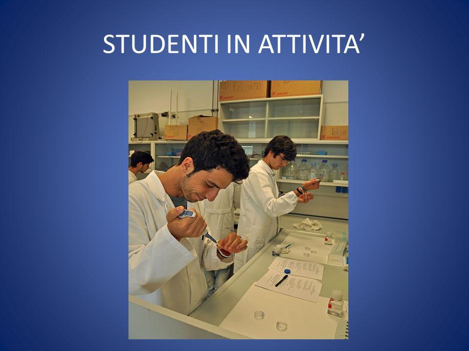 STUDENTI IN ATTIVITA