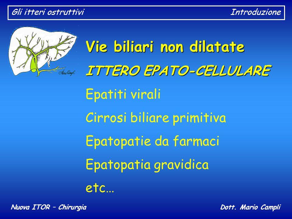 Gli itteri ostruttiviIntroduzione Nuova ITOR – ChirurgiaDott. Mario Campli Vie biliari non dilatate ITTERO EPATO-CELLULARE Epatiti virali Cirrosi bili