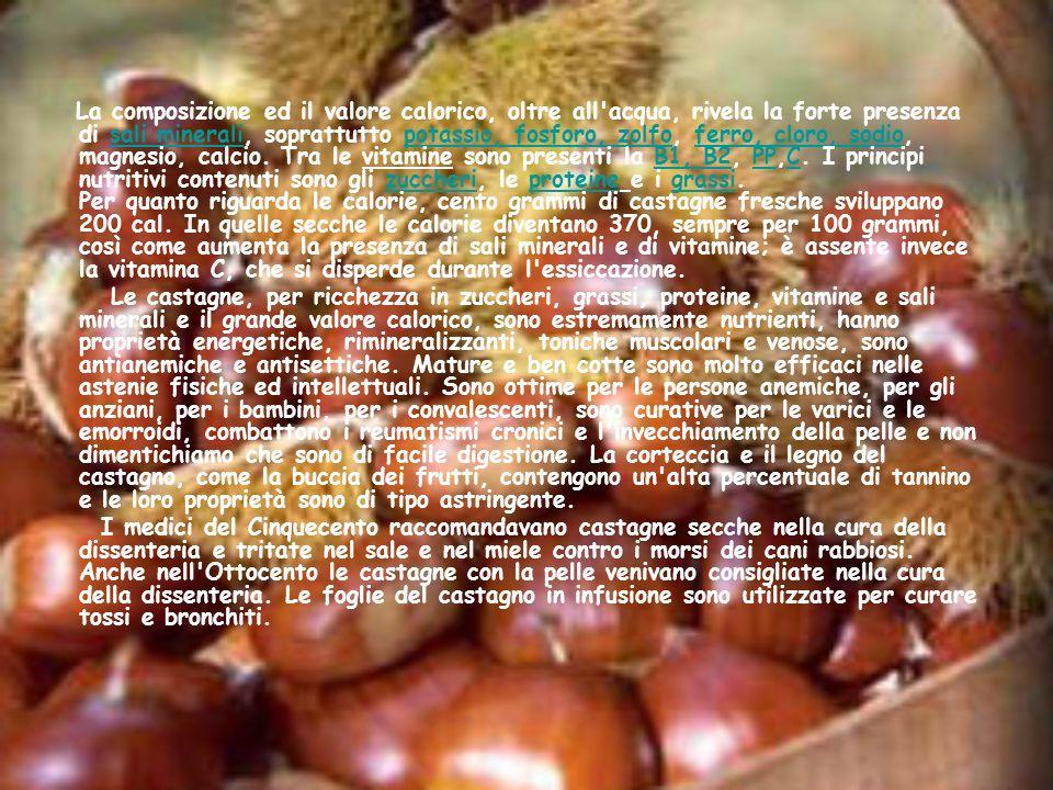 Proteine: Le proteine sono uno dei componenti fondamentali delle cellule.