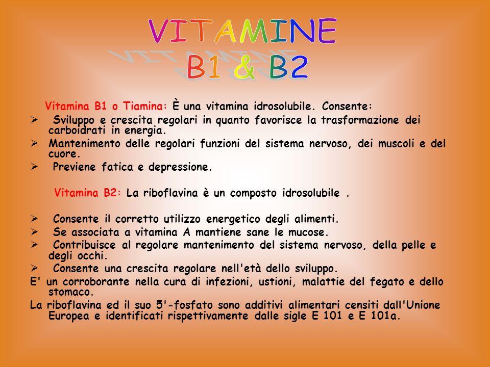 Vitamina B1 o Tiamina: È una vitamina idrosolubile.
