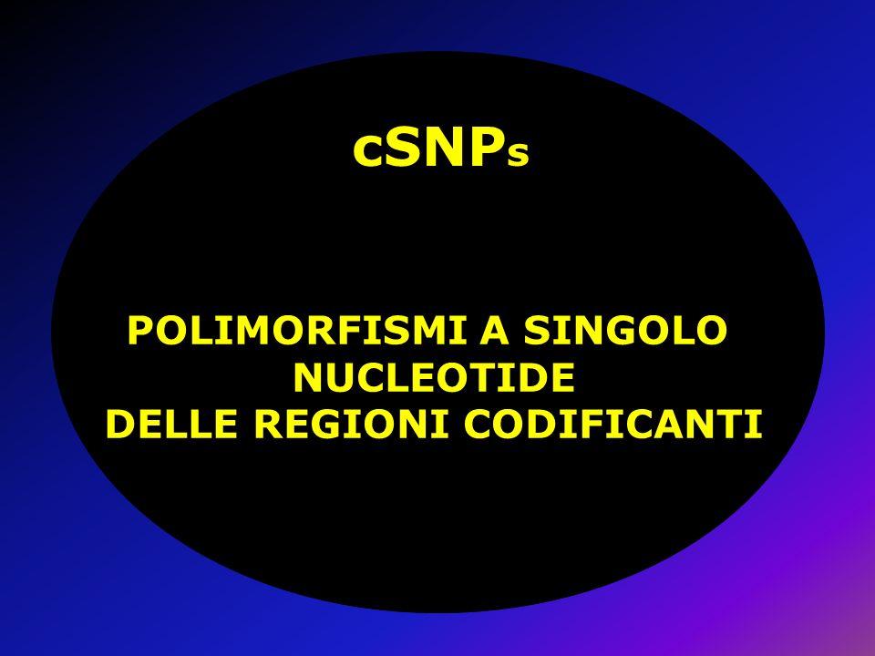 cSNP s POLIMORFISMI A SINGOLO NUCLEOTIDE DELLE REGIONI CODIFICANTI