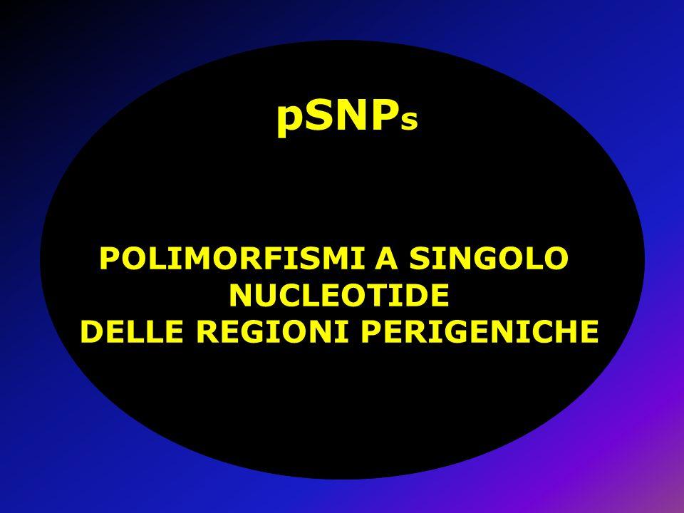 pSNP s POLIMORFISMI A SINGOLO NUCLEOTIDE DELLE REGIONI PERIGENICHE