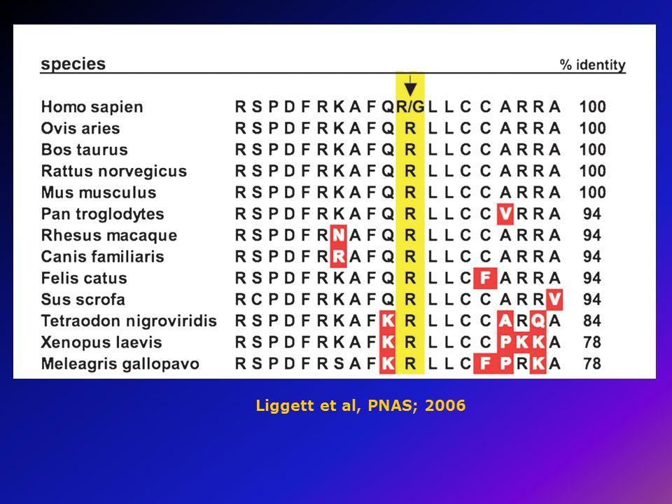 Liggett et al, PNAS; 2006