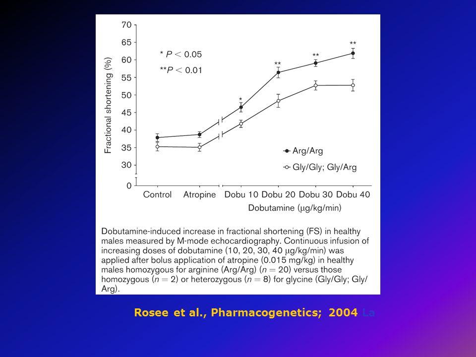 Rosee et al., Pharmacogenetics; 2004 La