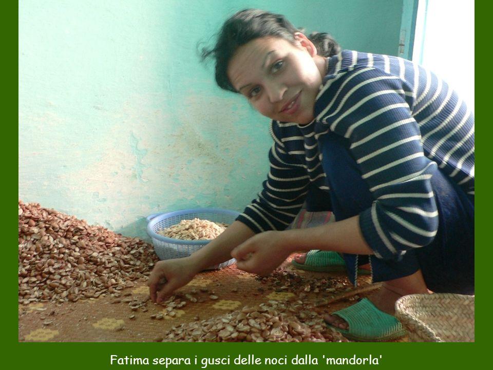 Fatima separa i gusci delle noci dalla 'mandorla'