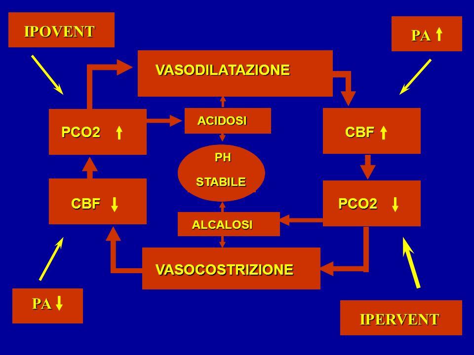 VASOCOSTRIZIONE VASODILATAZIONE PCO2CBF PCO2CBF ACIDOSI ALCALOSI PH STABILE PA PA IPERVENT IPOVENT