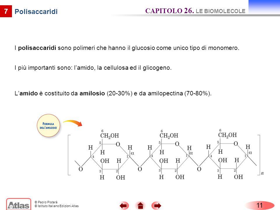 © Paolo Pistarà © Istituto Italiano Edizioni Atlas I polisaccaridi sono polimeri che hanno il glucosio come unico tipo di monomero. 7 Polisaccaridi La
