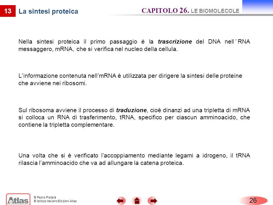 © Paolo Pistarà © Istituto Italiano Edizioni Atlas 13 La sintesi proteica Nella sintesi proteica il primo passaggio è la trascrizione del DNA nellRNA