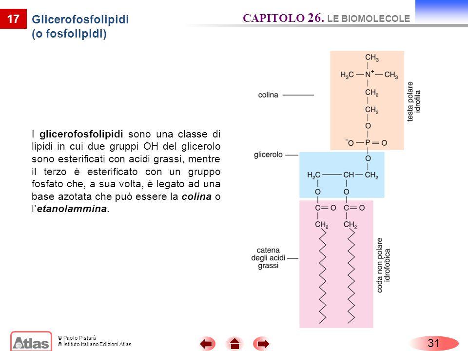 © Paolo Pistarà © Istituto Italiano Edizioni Atlas 17 Glicerofosfolipidi (o fosfolipidi) I glicerofosfolipidi sono una classe di lipidi in cui due gru