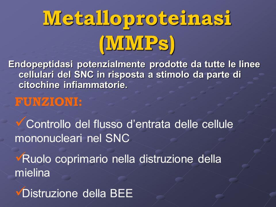 Metalloproteinasi (MMPs) Endopeptidasi potenzialmente prodotte da tutte le linee cellulari del SNC in risposta a stimolo da parte di citochine infiamm
