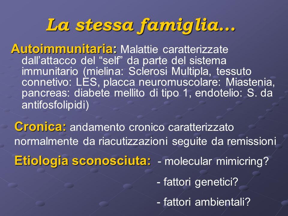 La stessa famiglia… Autoimmunitaria: Autoimmunitaria: Malattie caratterizzate dallattacco del self da parte del sistema immunitario (mielina: Sclerosi