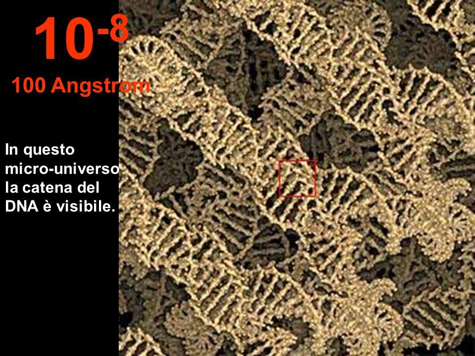 In questo micro-universo la catena del DNA è visibile. 10 -8 100 Angstrom