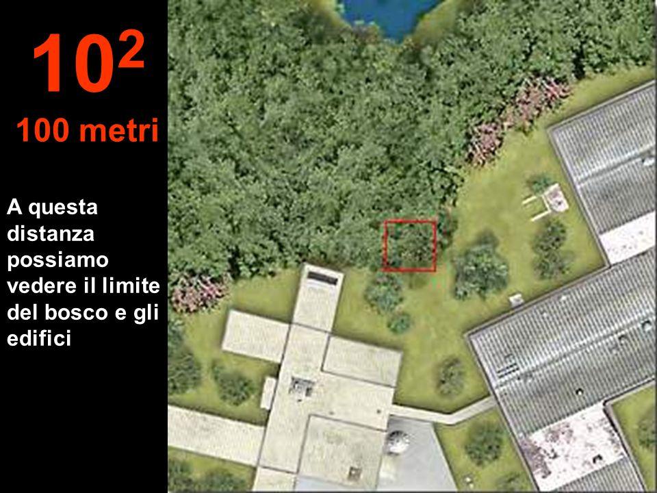 A questa distanza possiamo vedere il limite del bosco e gli edifici 10 2 100 metri