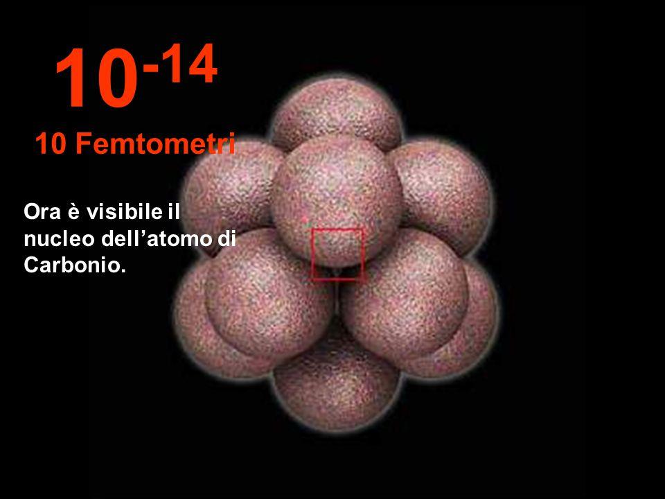 Ora è visibile il nucleo dellatomo di Carbonio. 10 -14 10 Femtometri