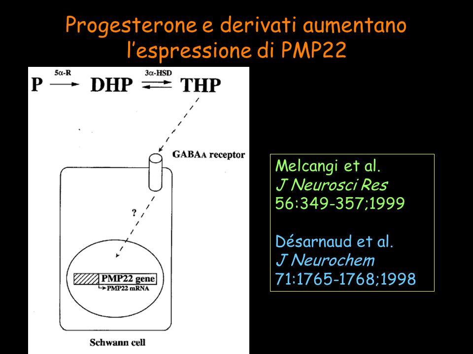 Progesterone e derivati aumentano lespressione di PMP22 Melcangi et al. J Neurosci Res 56:349-357;1999 Désarnaud et al. J Neurochem 71:1765-1768;1998