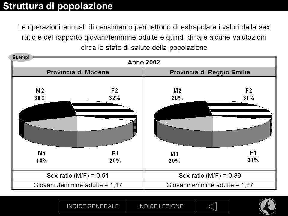 INDICE GENERALEINDICE LEZIONE Struttura di popolazione Le operazioni annuali di censimento permettono di estrapolare i valori della sex ratio e del ra