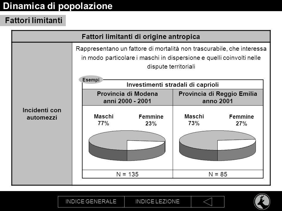 INDICE GENERALEINDICE LEZIONE Dinamica di popolazione Fattori limitanti Fattori limitanti di origine antropica Incidenti con automezzi Rappresentano u