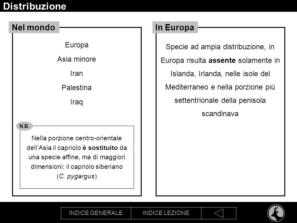 INDICE GENERALEINDICE LEZIONE Cartografia tematica m VOCAZIONE BIOTICA VOCAZIONE AGROFORESTALE Fonte Regione Emilia-Romagna, 1998 Carta delle vocazioni faunistiche