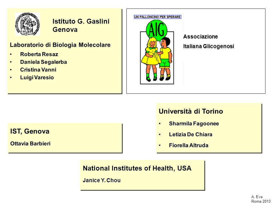 National Institutes of Health, USA Janice Y. Chou National Institutes of Health, USA Janice Y. Chou Associazione Italiana Glicogenosi Istituto G. Gasl