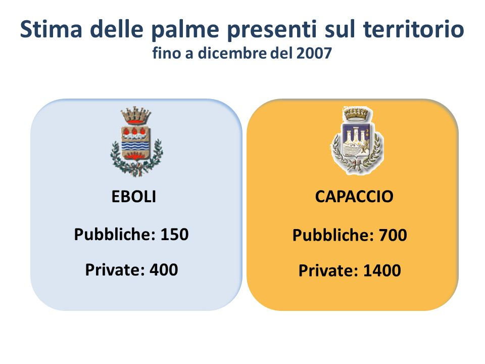 Stima delle palme presenti sul territorio fino a dicembre del 2007 EBOLICAPACCIO Pubbliche: 150 Private: 400 Pubbliche: 700 Private: 1400