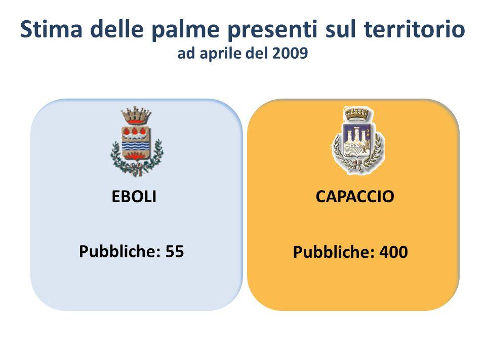 Stima delle palme presenti sul territorio ad aprile del 2009 EBOLICAPACCIO Pubbliche: 55 Pubbliche: 400