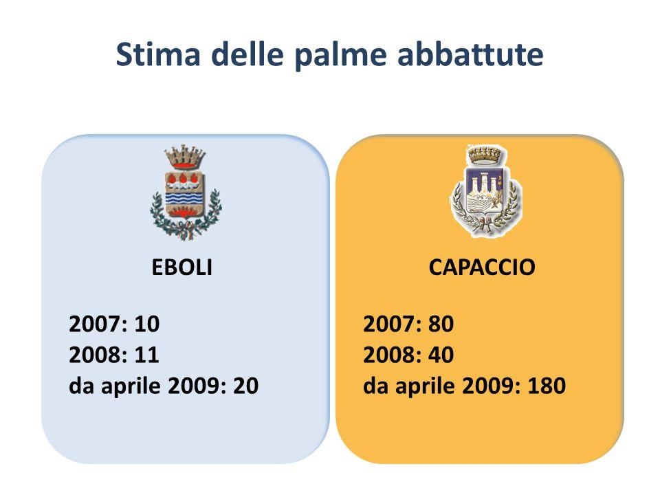 Stima delle palme abbattute EBOLICAPACCIO 2007: 10 2008: 11 da aprile 2009: 20 2007: 80 2008: 40 da aprile 2009: 180