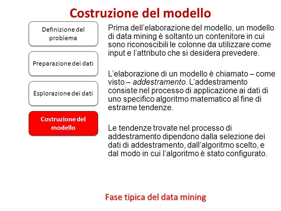 Costruzione del modello Definizione del problema Prima dellelaborazione del modello, un modello di data mining è soltanto un contenitore in cui sono r