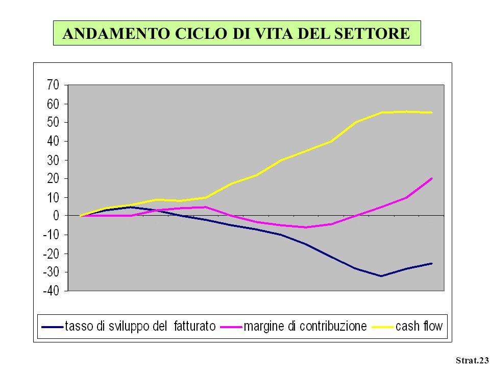 Strat.23 ANDAMENTO CICLO DI VITA DEL SETTORE