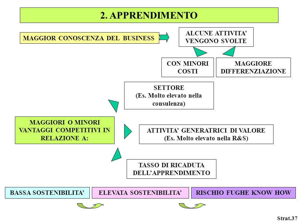 Strat.37 2. APPRENDIMENTO MAGGIOR CONOSCENZA DEL BUSINESS ALCUNE ATTIVITA VENGONO SVOLTE MAGGIORE DIFFERENZIAZIONE CON MINORI COSTI TASSO DI RICADUTA