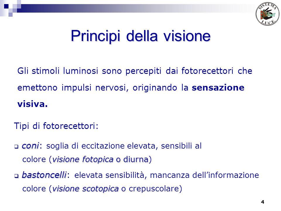 4 Principi della visione Gli stimoli luminosi sono percepiti dai fotorecettori che emettono impulsi nervosi, originando la sensazione visiva. Tipi di