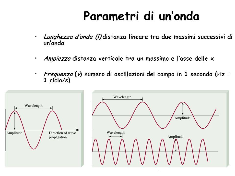 Parametri di unonda Lunghezza donda (l) distanza lineare tra due massimi successivi di unonda Ampiezza distanza verticale tra un massimo e lasse delle