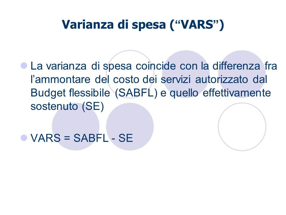 Varianza di spesa ( VARS ) La varianza di spesa coincide con la differenza fra lammontare del costo dei servizi autorizzato dal Budget flessibile (SAB