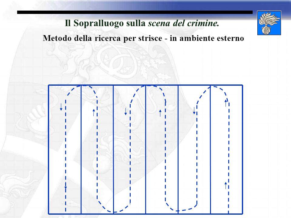 Il Sopralluogo sulla scena del crimine. Metodo della ricerca per strisce - in ambiente esterno