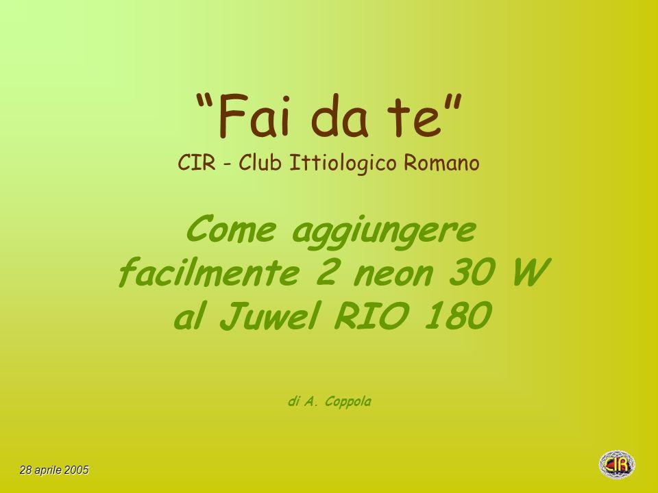Fai da te CIR - Club Ittiologico Romano Come aggiungere facilmente 2 neon 30 W al Juwel RIO 180 di A.