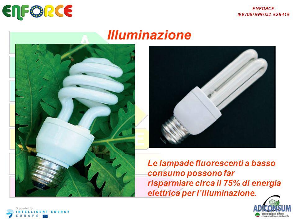 ENFORCE IEE/08/599/SI2.528415 Illuminazione Le lampade fluorescenti a basso consumo possono far risparmiare circa il 75% di energia elettrica per lill