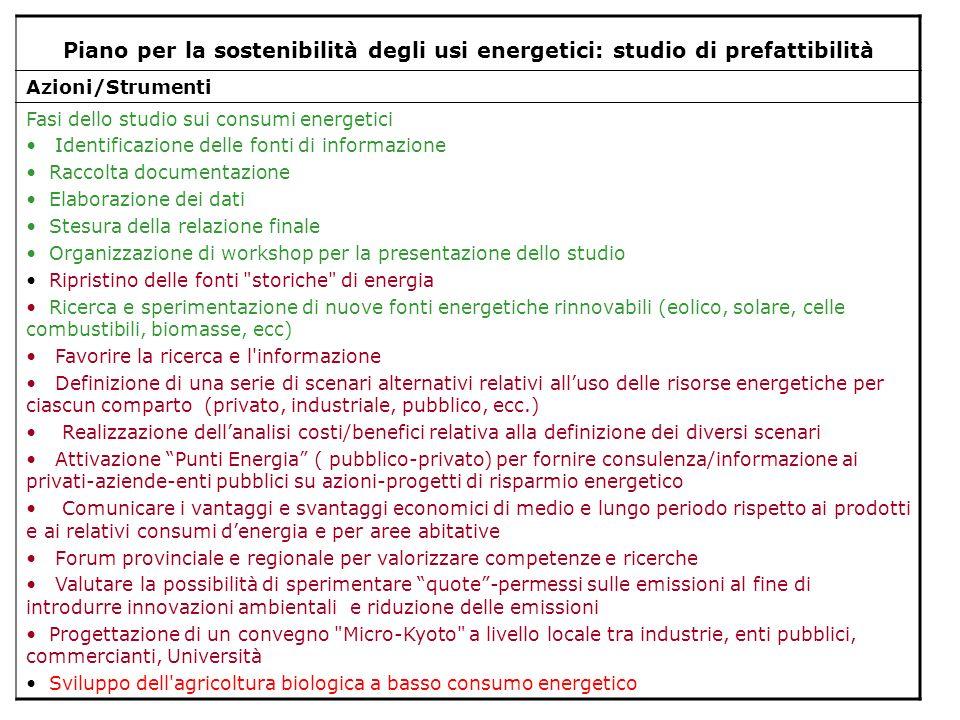Piano per la sostenibilità degli usi energetici: studio di prefattibilità Azioni/Strumenti Fasi dello studio sui consumi energetici Identificazione de