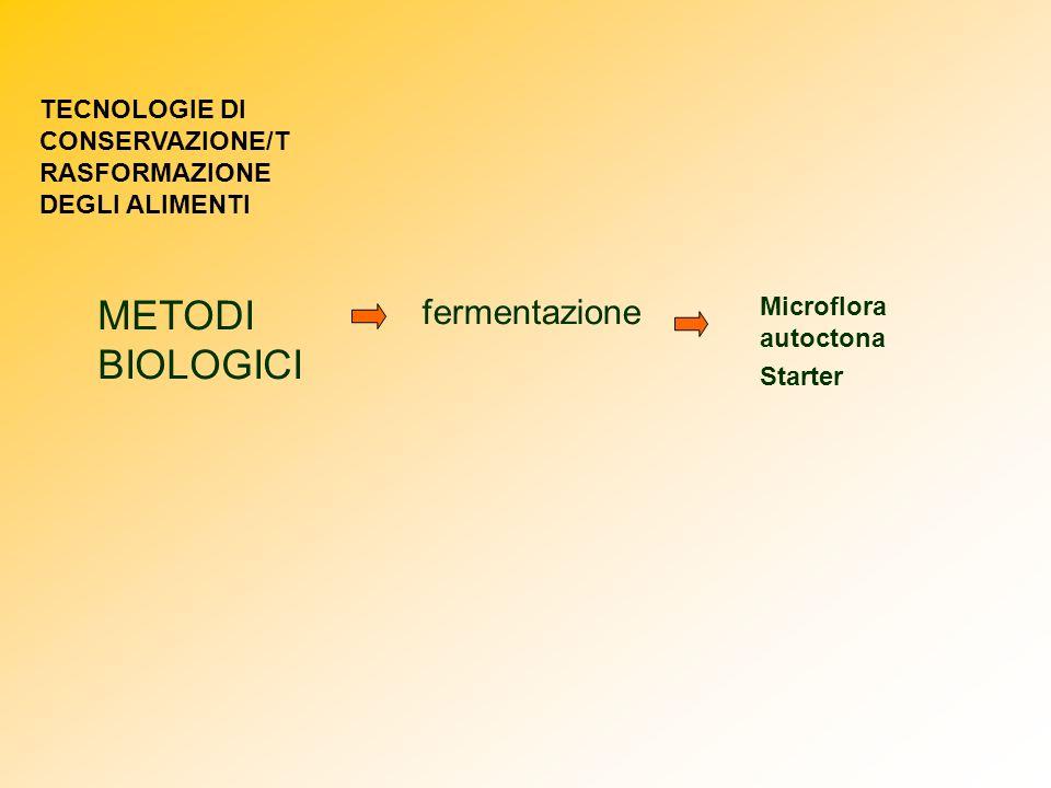METODI BIOLOGICI fermentazione Microflora autoctona Starter TECNOLOGIE DI CONSERVAZIONE/T RASFORMAZIONE DEGLI ALIMENTI