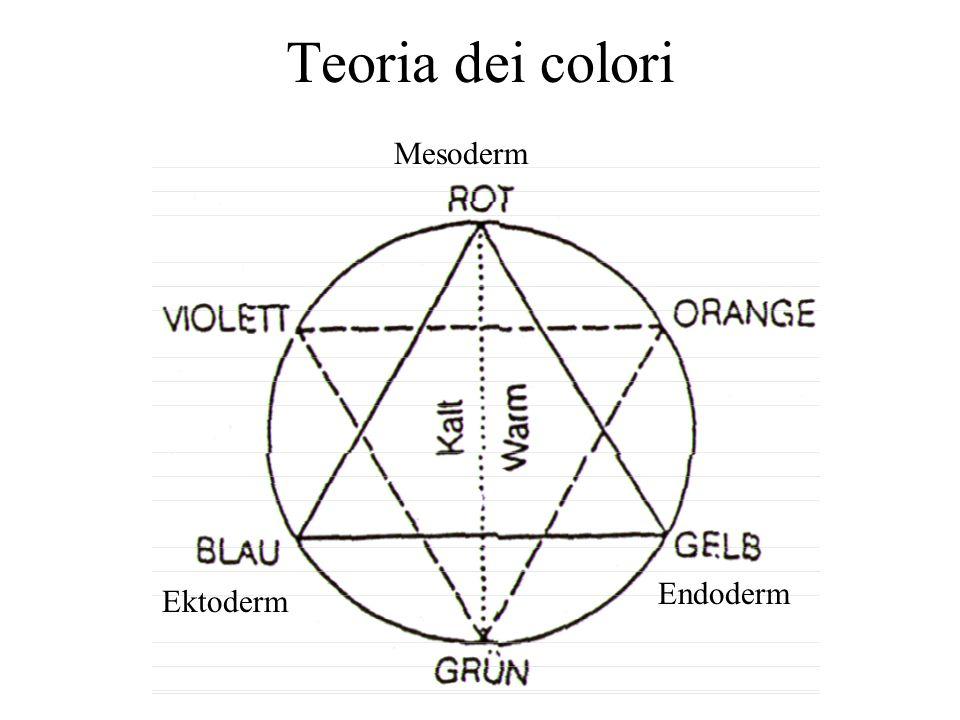 Teoria dei colori Ektoderm Endoderm Mesoderm