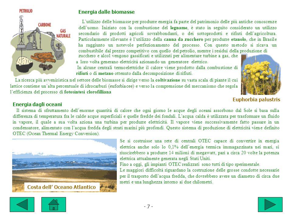 Energia dalle biomasse Lutilizzo delle biomasse per produrre energia fa parte del patrimonio delle più antiche conoscenze delluomo.