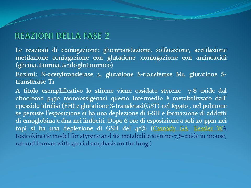 Le reazioni di coniugazione: glucuronidazione, solfatazione, acetilazione metilazione coniugazione con glutatione,coniugazione con aminoacidi (glicina