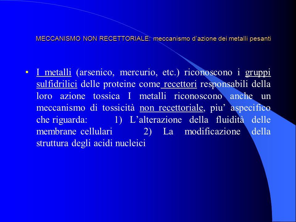 MECCANISMO NON RECETTORIALE: meccanismo dazione dei metalli pesanti I metalli (arsenico, mercurio, etc.) riconoscono i gruppi sulfidrilici delle prote