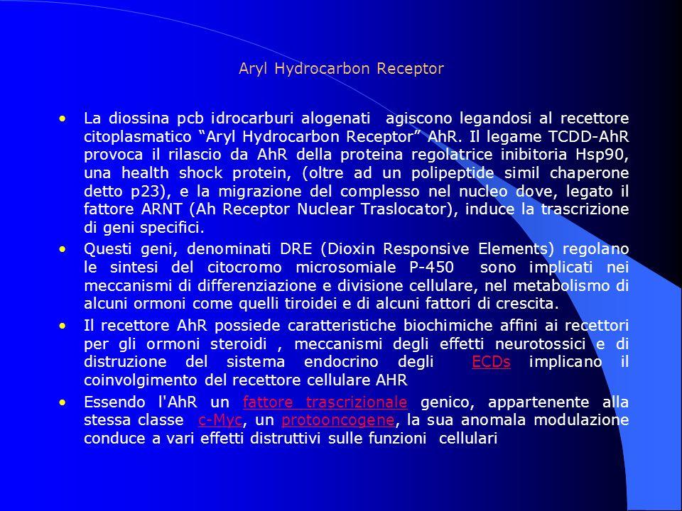 Aryl Hydrocarbon Receptor La diossina pcb idrocarburi alogenati agiscono legandosi al recettore citoplasmatico Aryl Hydrocarbon Receptor AhR. Il legam