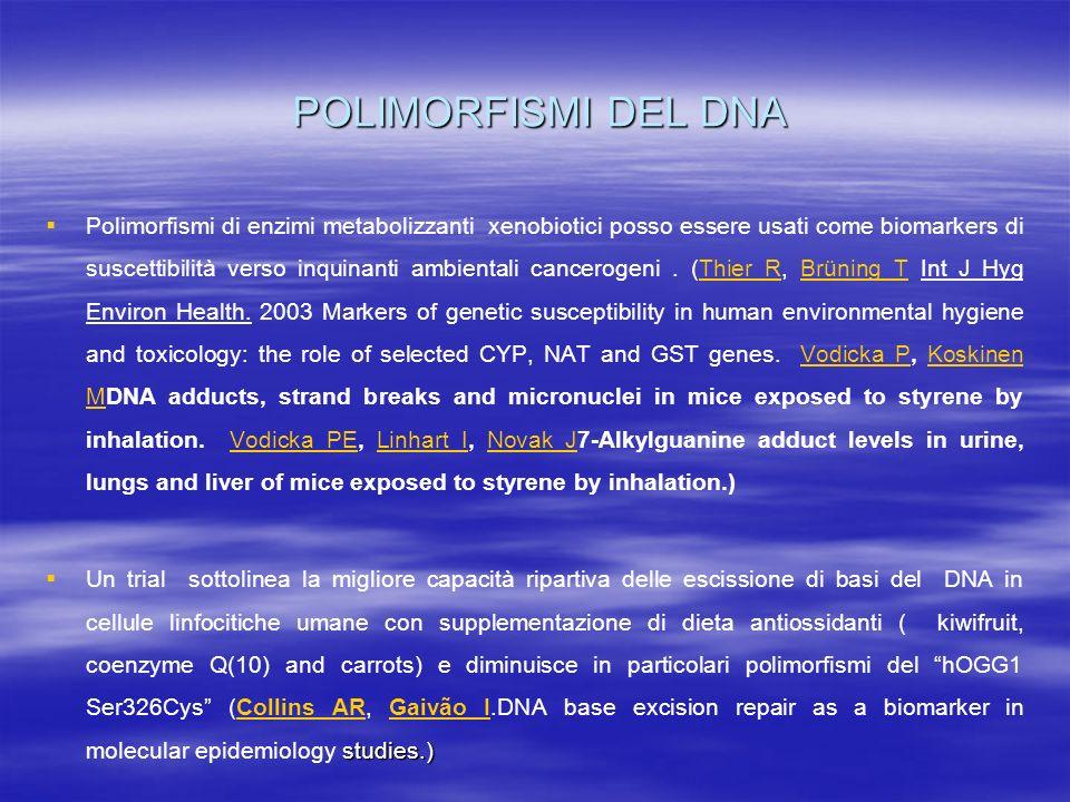 POLIMORFISMI DEL DNA Polimorfismi di enzimi metabolizzanti xenobiotici posso essere usati come biomarkers di suscettibilità verso inquinanti ambiental