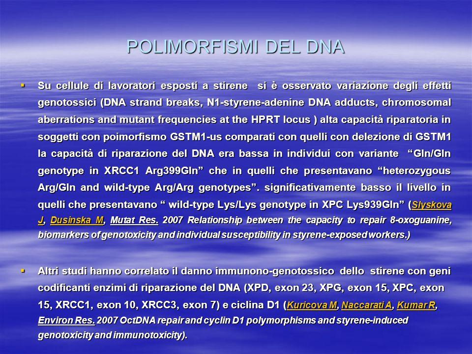 POLIMORFISMI DEL DNA Su cellule di lavoratori esposti a stirene si è osservato variazione degli effetti genotossici (DNA strand breaks, N1-styrene-ade