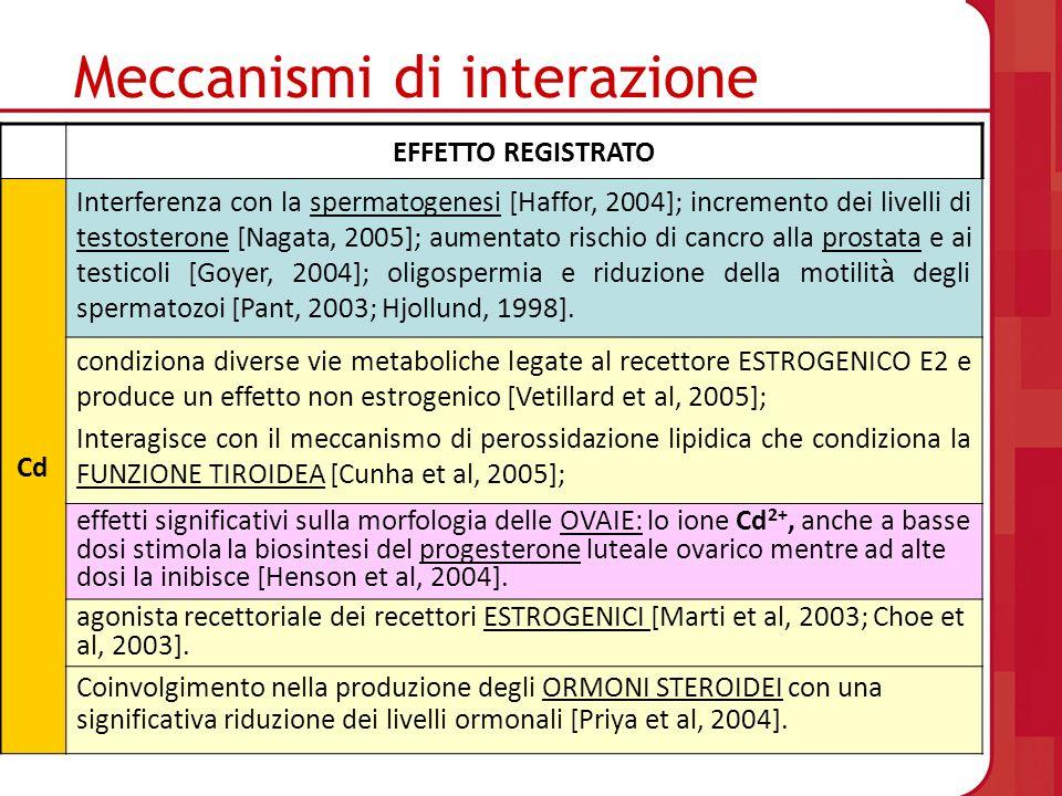 Meccanismi di interazione EFFETTO REGISTRATO Cd Interferenza con la spermatogenesi [Haffor, 2004]; incremento dei livelli di testosterone [Nagata, 200